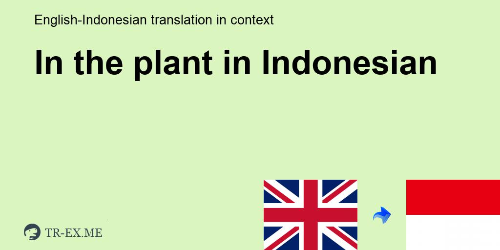 In The Plant Terjemahan Dalam Bahasa Indonesia In The Plant Dalam Sebuah Kalimat Dalam Bahasa Inggris